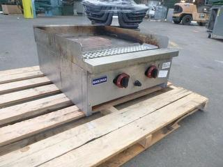 gas Max Grill Photo